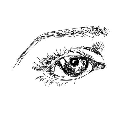 brow: hand draw scetchy big eye with brow on the white background Illustration