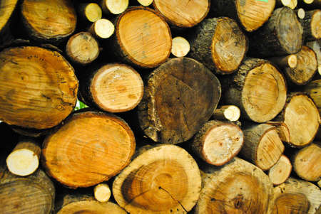 log Stock Photo - 12613115