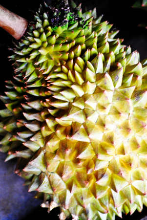 durian Stock Photo - 12924791