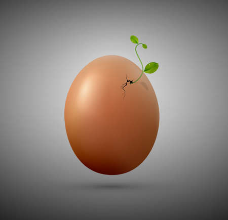 New life concept, something new idea, new organic concept, Easter composition, plant sprout growing from eggshell, Easter composition, germinate through the eggshell Ilustração