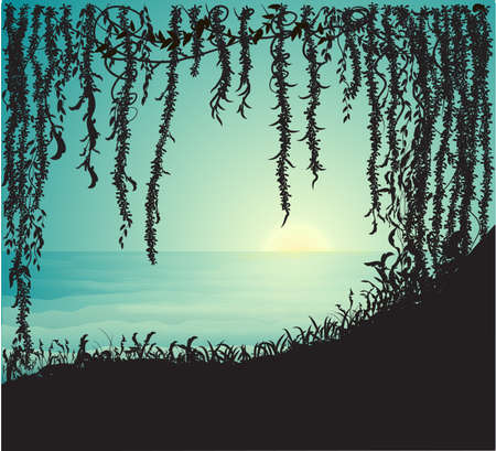 thicket, liana cave and view on sea side, early morning on the wild beach, vector 向量圖像