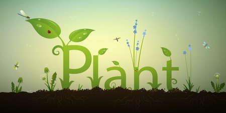 ladybug: Text letters plant and green spring sprout with roots. Illustration