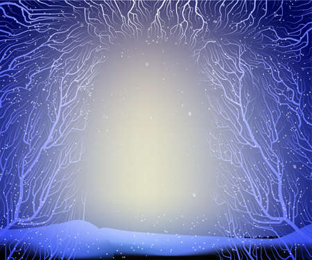way to the deep fairy frosty winter forest, shadows, branches silhouette,