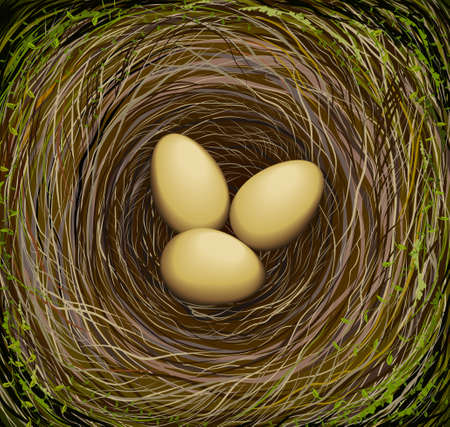 Realistic bird s nest with three eggs, Easter in nature, vector illustration.