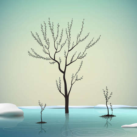 Melting snow and sprout catkin trees in spring clean cold water, spring come, spring nature beauty Ilustração