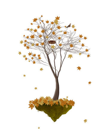 piece of autumn, autumn tree with yellow leaves and empty birds nest growing on the flying rock on white background, autumn tree isolated Vector illustration.