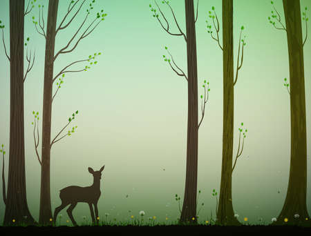 young deer in spring or summer forest, nature scene,
