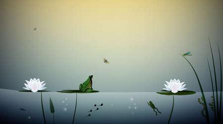 Rana vive en la escena del estanque