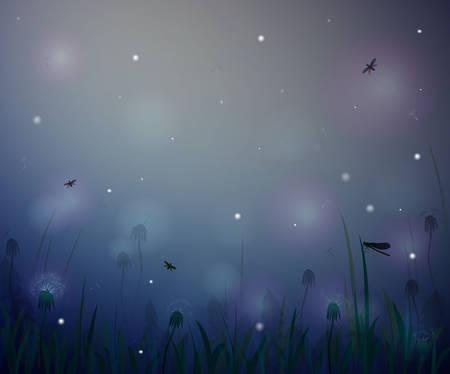 summer night, night summer field life, fireflight vector 向量圖像