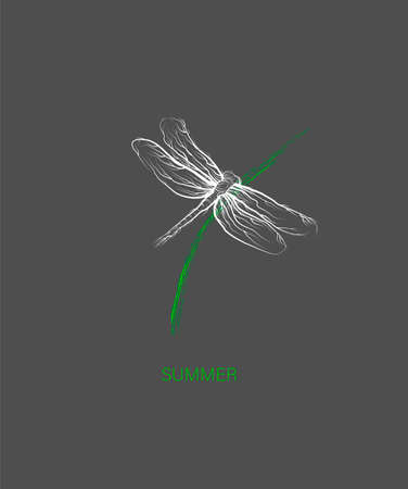 creative logo for summer collection, forest animal concept, dragonfly looks like tree, eco product idea, 일러스트