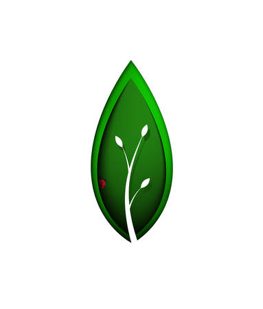 spring symbol, green leaf with ladybug inside, layered green leaf on the white background, eco concept, protect the plant idea,