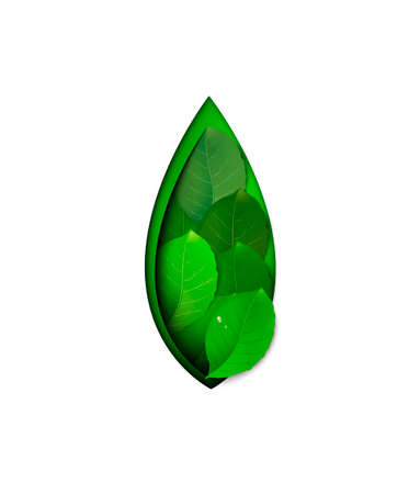 spring symbol, layered green leaf on the white background, eco concept, protect the plant idea, 일러스트