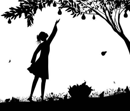 girl silhoutte harvest the pear,fruit harvest scene, shadows black and white, bucket full of pears on the grass, nature product, vector