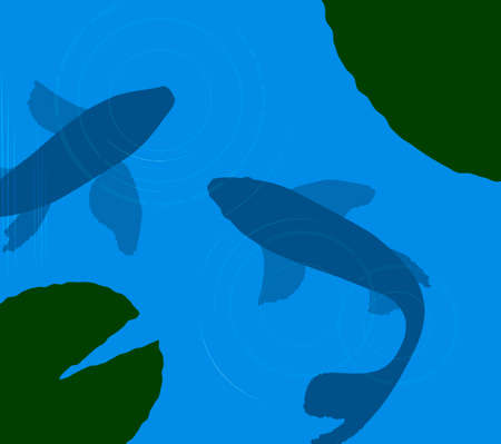 two koi carp in pond, carps silhouette in flat color,