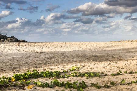 VIEW OF JIBACOA BEACH