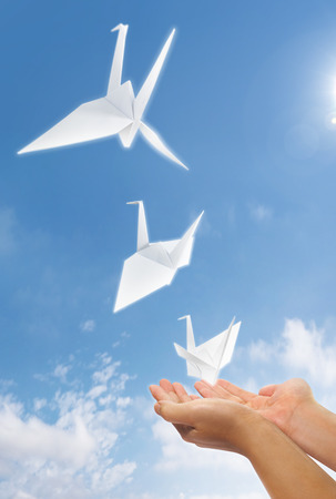 hand let go origami paper pigeon into the sky Stock Photo