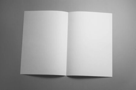 blank magazine: Blank brochure magazine isolated on gray