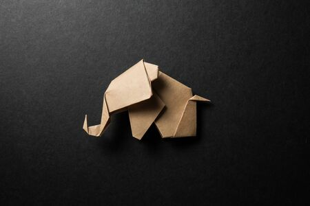 Brown paper origami elephant isolated on black paper background