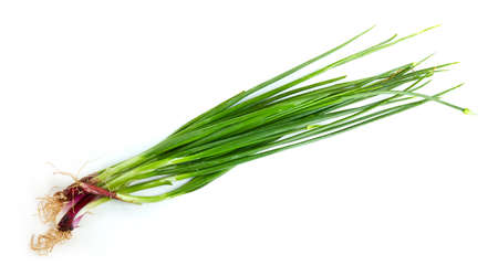 Fresh green onion isolated on white background