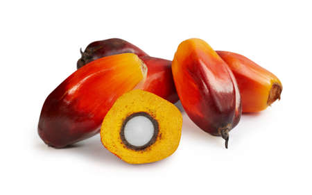 Palm oil fruits isolated on the white background