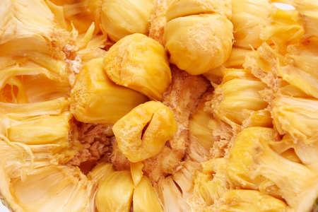 Close up of cempedak or artocarpus interger Reklamní fotografie
