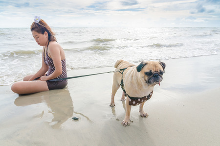 fidgety: Selective focus on pug dog playing and touchy with girl  on summer sea beach Stock Photo