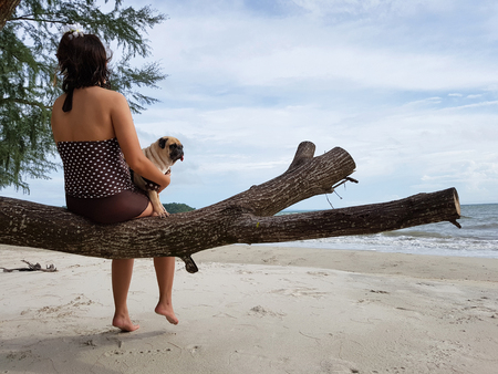 Sad woman sit on tree in white sand beach on the sea and carry cute pug dog for soothe with dark cloudy Stock Photo