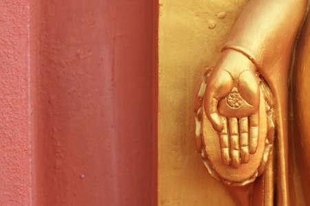 hand of Buddha image  photo