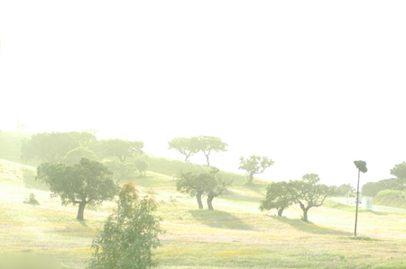 podere: Foggy hill Stock Photo