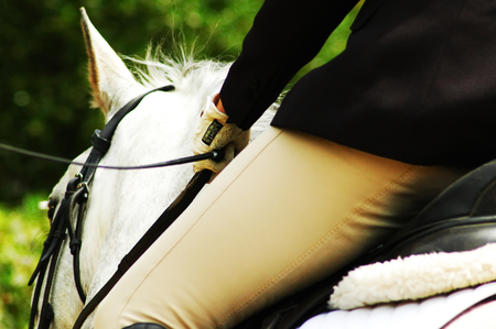 Close up photo of a dressage rider entering to his test at a competition