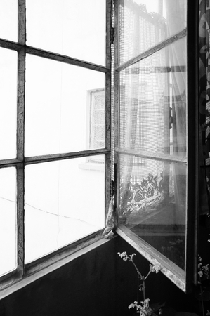 Black and white photo of sn old abandoned house metal and glass open window with a little pink flower next to it