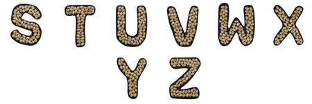 Isolated Font English or Latin whole alphabet S-Z made of seashell on black granite on white background