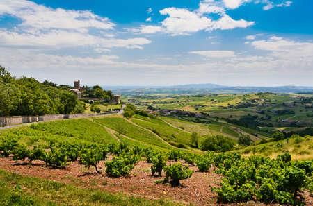 rhone: Montmelas castle and vineyards