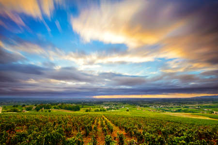 rhone: Clouds in long exposure at sunrise time over vineyards of Beaujolais, France Stock Photo