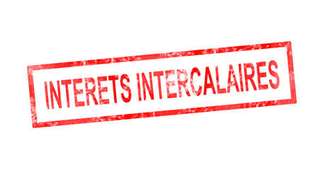 intermediate: Intermediate interests in French translation in red rectangular stamp Stock Photo