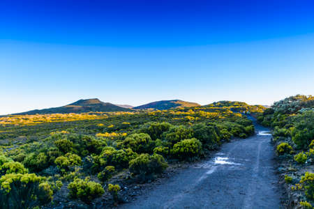 Hiking trail at volcanic area of Reunion Island Stock Photo