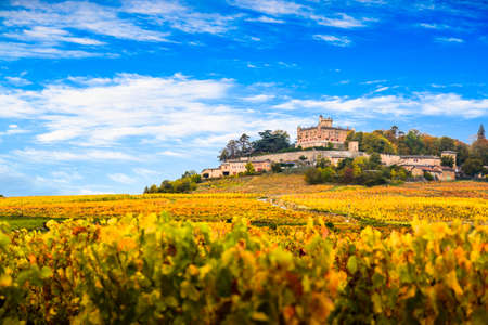 Yellow leaves and castle in Beaujolais land at fall