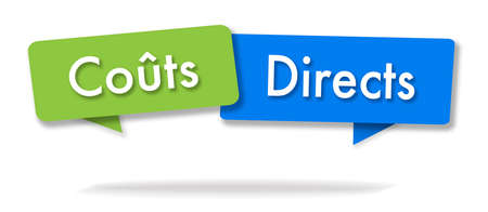 Direct costs illustration in two colored bubbles in French blue and green
