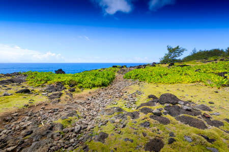 Typical landscape with volcanic rock at Reunion Island