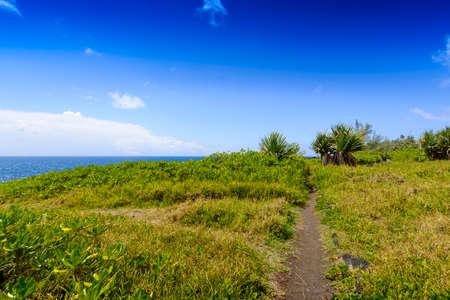 Path close to the sea at Reunion Island