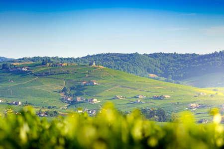 Church of Fleurie village and vineyards, Beaujolais, France 版權商用圖片