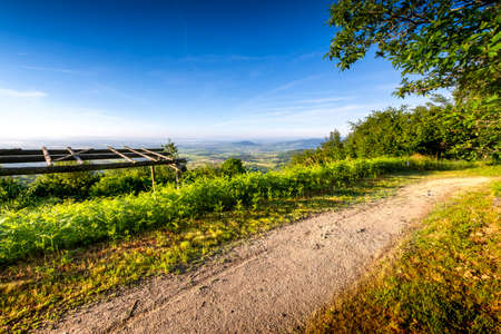 Hiking path, Chiroubles terrace, Beaujolais, France