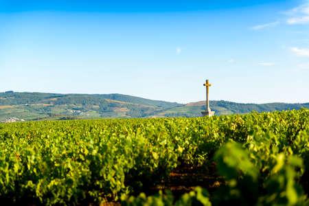 Religious cross of Py in vineyards, Beaujolais, France