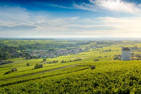 Village of Cercie at sunrise, Village of Beaujolais, France 版權商用圖片