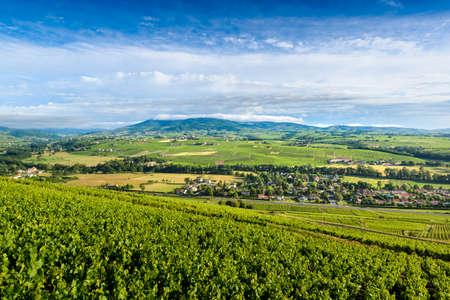 Cercie village and Regnie-Durette vineyards, Landscape of Beaujolais, France