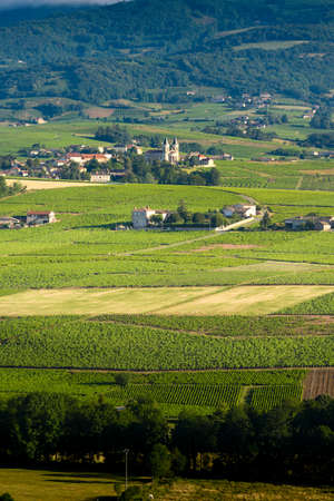 Village of Regnie-Durette and vineyards, Landscape of Beaujolais, France