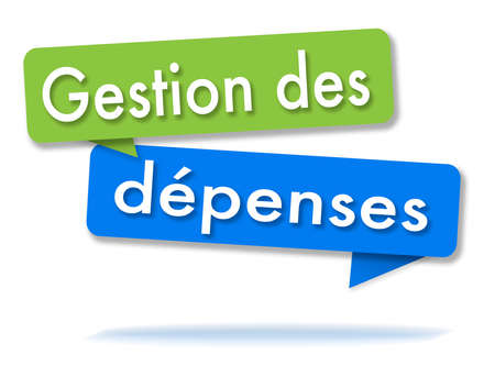 Expense management in two colored green and blue speech bubbles and french language Reklamní fotografie