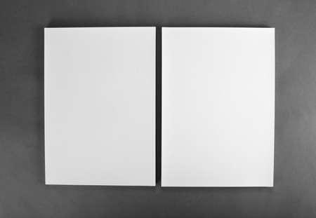 hoja en blanco: Cartel folleto en blanco en gris para reemplazar su dise�o