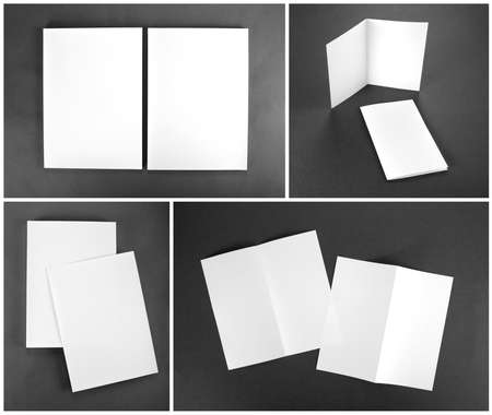 flyer: identity design, corporate templates, company style, set of booklets, blank white folding paper flyer