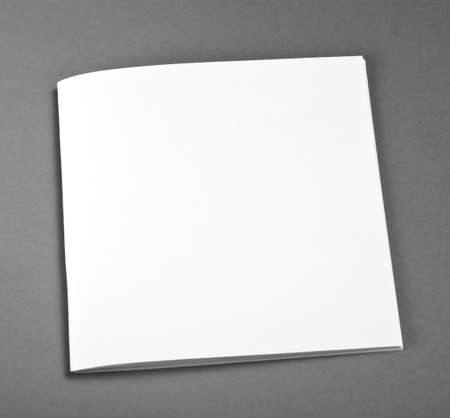 brochure cover: Blank Brochure magazine isolated on grey to replace your design Stock Photo
